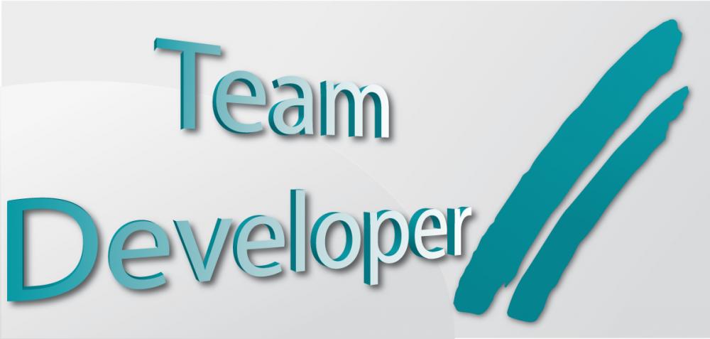 team-developer-md-consulting