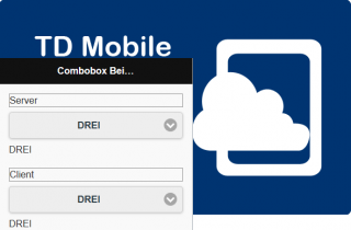 combobox-td-mobile-server-client-cloud-device-md-consulting