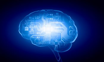 md-consulting-td-update-brain-digital-platine-festplatte-human-intelligence-brain