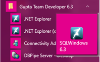 team-developer-td-mobile-.net-explorer-gupta