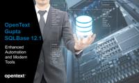 MD-Consulting-Seminar-Opentext-Gupta-SQL-Base-tools-version-update-database