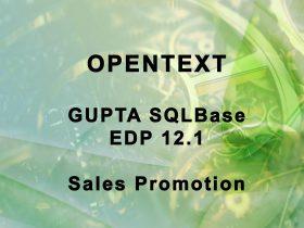 md-consulting-sqlbase-gupta-opentext-backup-recovery-lizenzen-edp-sales-promotion-aktion-rabatt-seats-datenbank